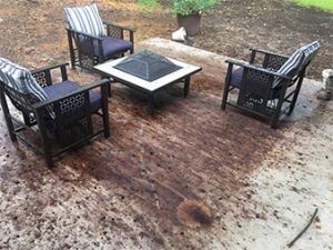 Tannin Stain Removal